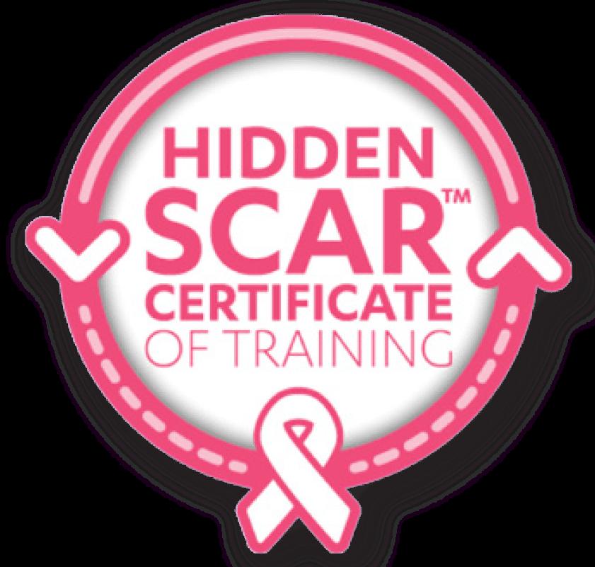Hidden Scar Provider